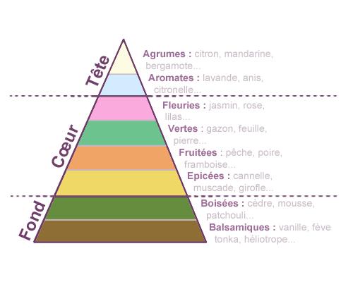 pyramideolfactiveimg