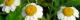 Capture d'écran 2019-05-22 à 22.09.45