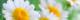 Capture d'écran 2019-05-22 à 22.10.08